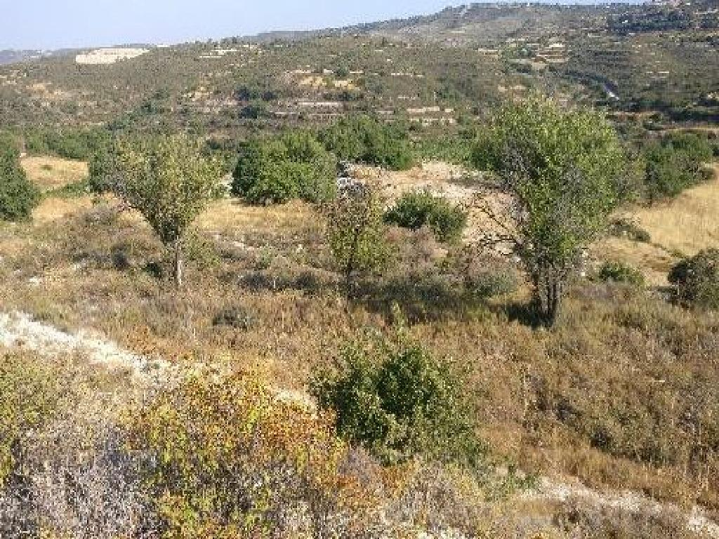 Land in Agios Therapon