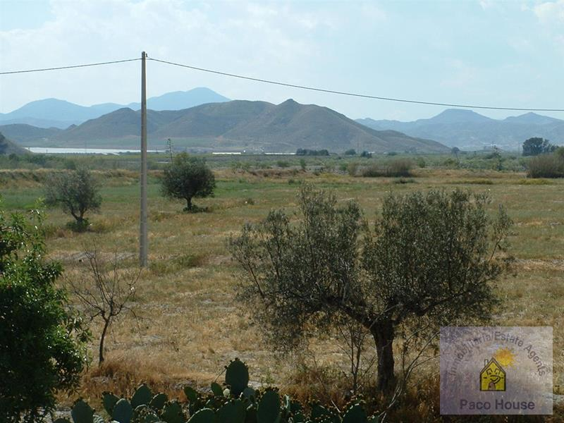 Land for sale Almendricos
