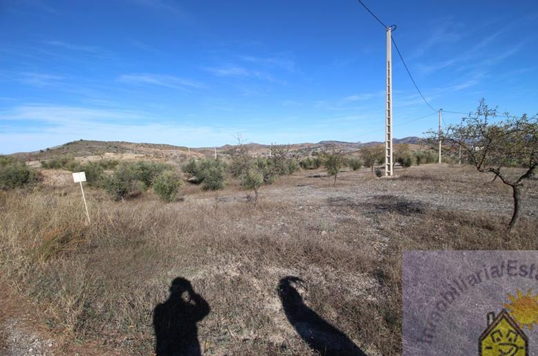 Land for sale Zarzalico