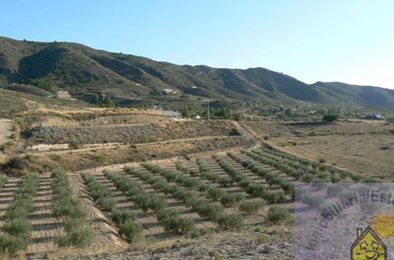 Land for sale Aguaderas
