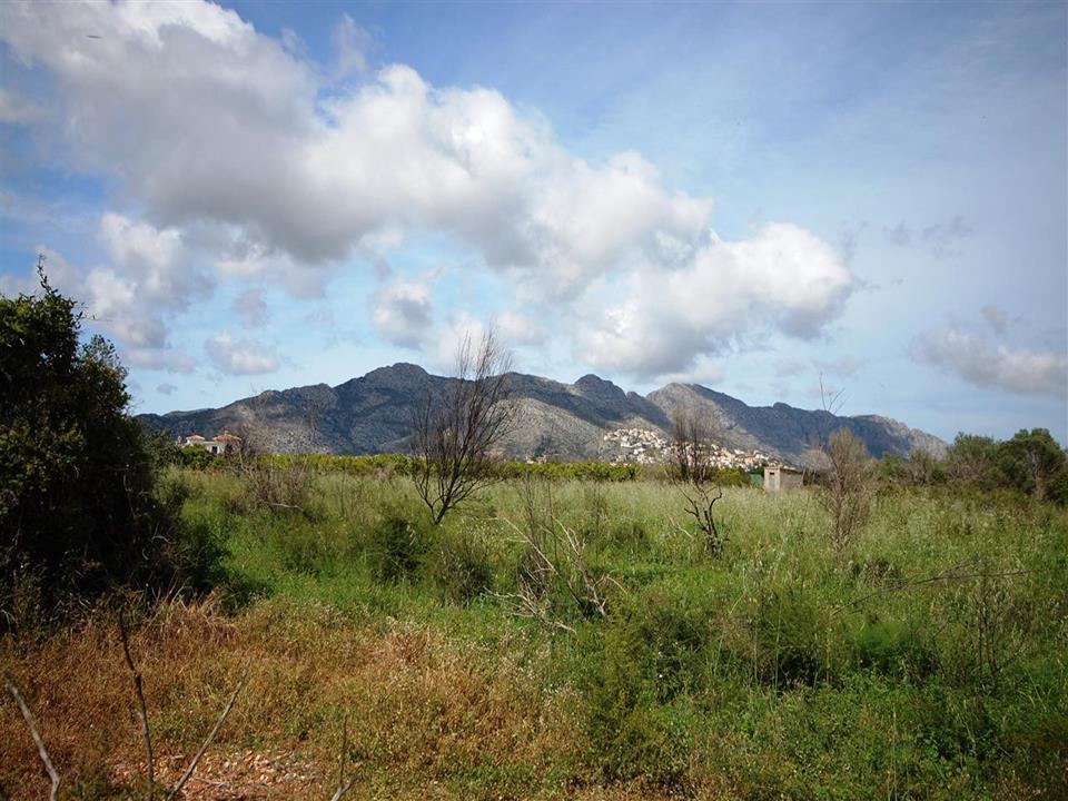 Plot in Benidoleig