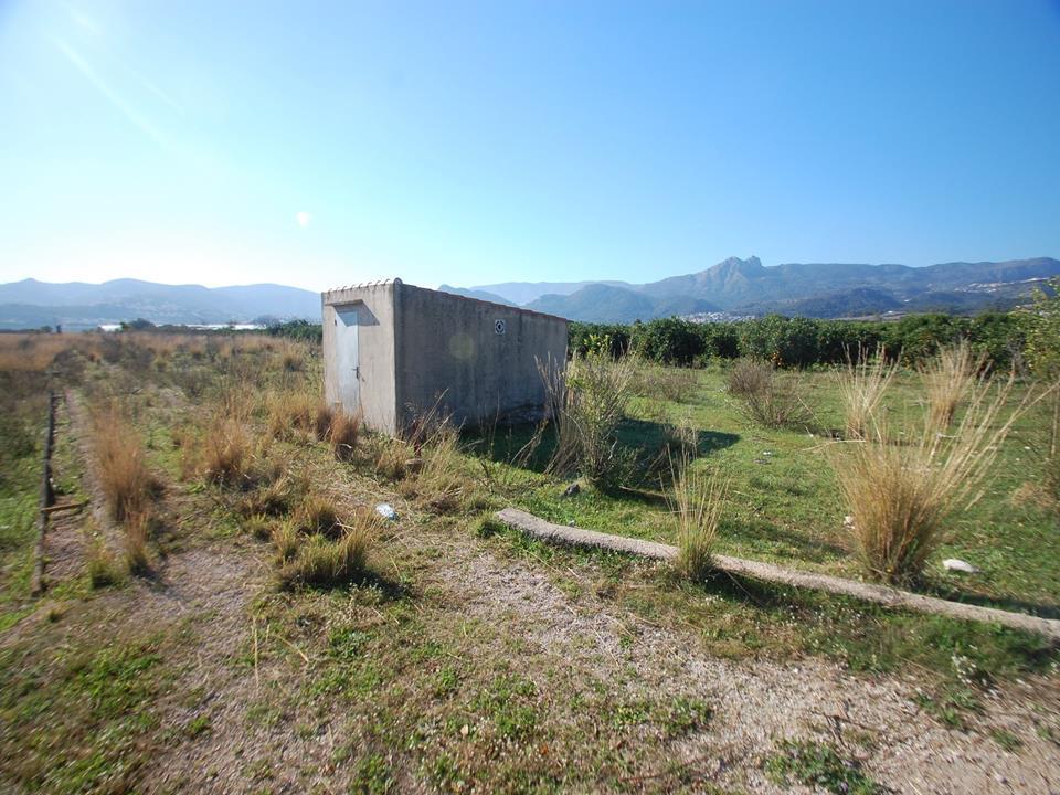 Plot in Tormos