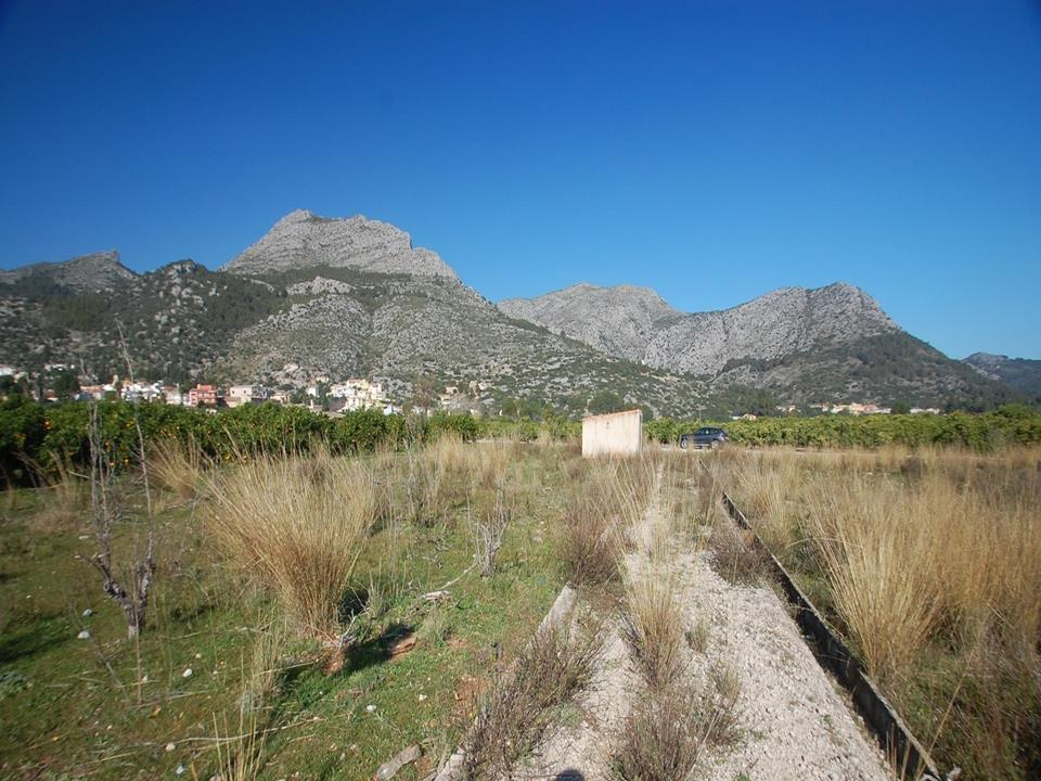 Plot in Tormos