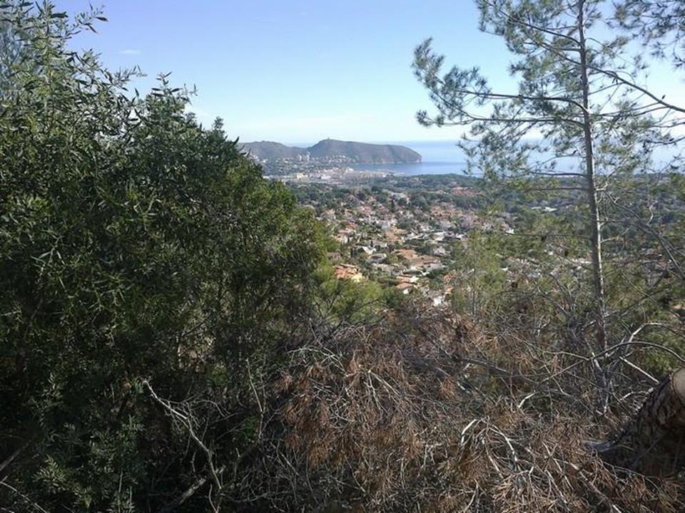 Land Land for Sale in Moraira