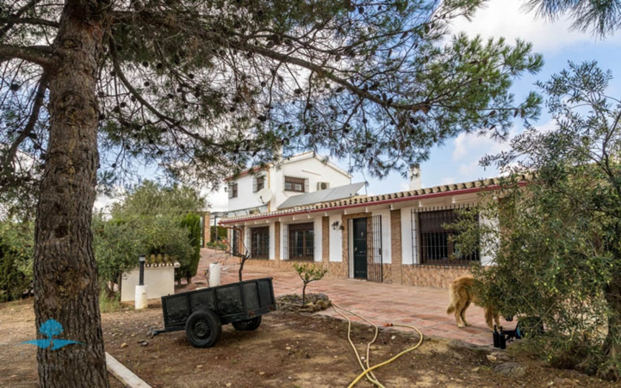 Country House in Alora