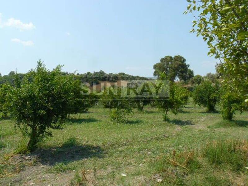 Land for sale Dalyan
