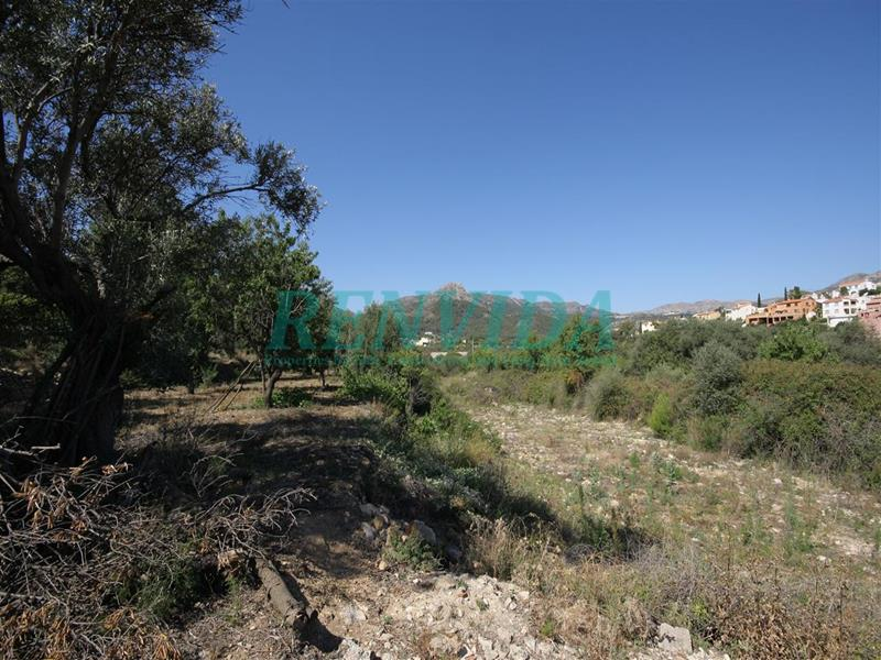 Plot for sale Orba
