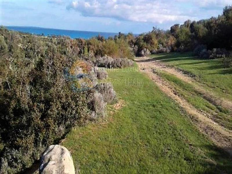 Land in Pissouri