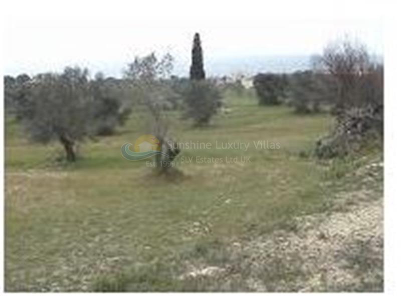 Land in Pyrgos