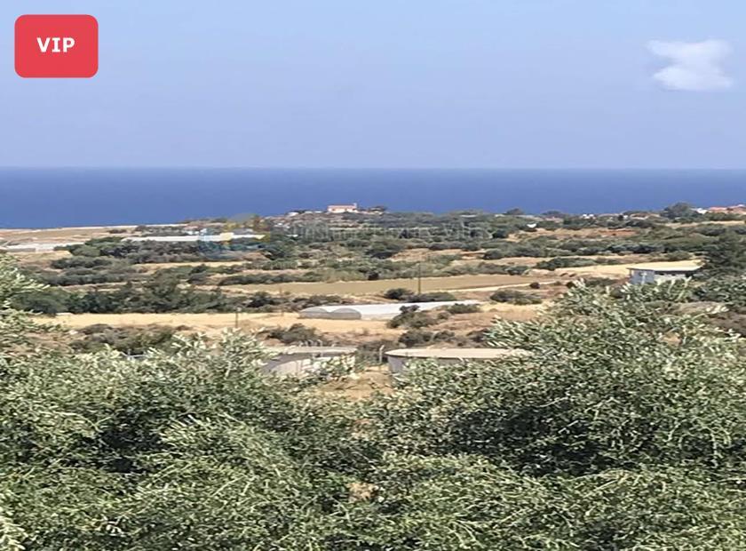 Detached Villa in Agia Marina