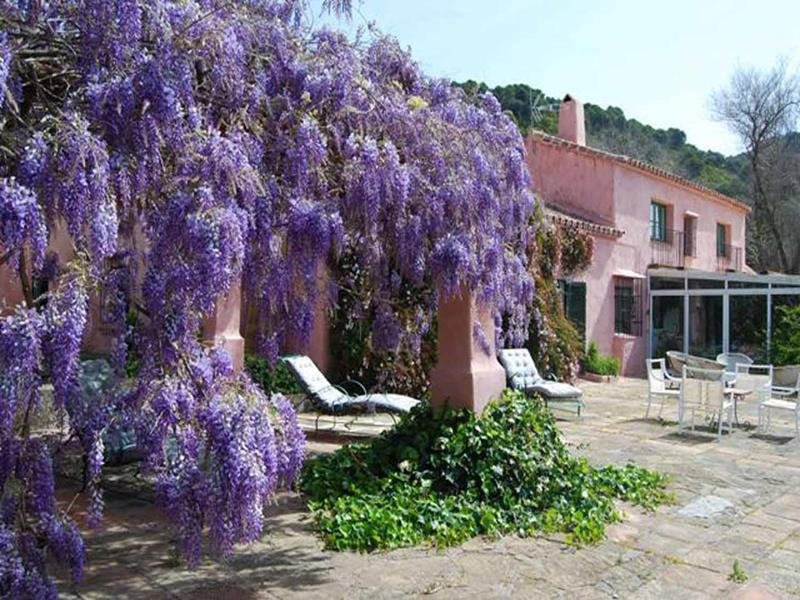 Country House with guest accommodation in Gaucin